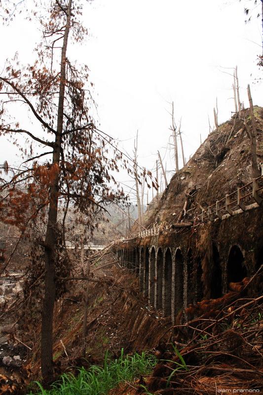 The Kalikuning bridge #3
