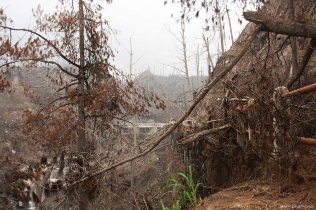 The Kalikuning bridge #1